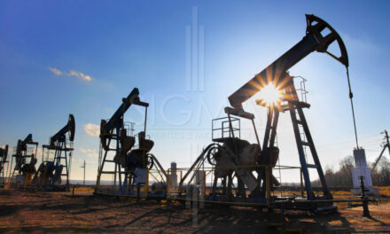 The Government Awarded Oil and Gas Exploration Blocks to Punjab and Balochistan